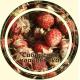 Земляника ягода