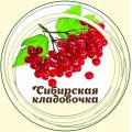 Калина плод