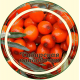 Облепиха ягода