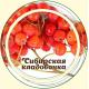 Рябина красная плод (арония)