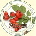 Шиповник плоды