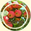 Яблоня плод