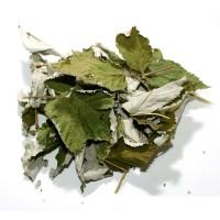 Ежевика лист 50 гр