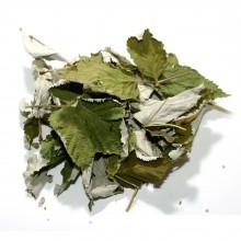 Ежевика лист 100 гр