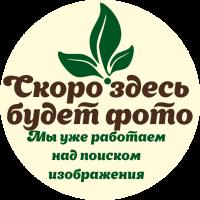 Крем для тела Пчелунья с прополисом и витаминами (Мелмур)