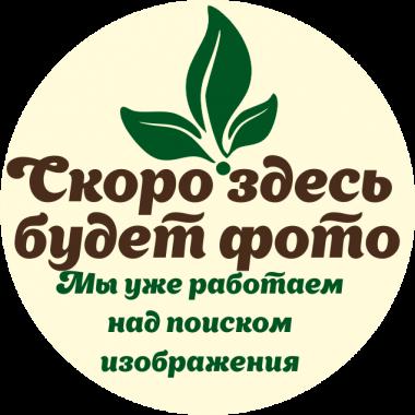 Сосновый сироп (Солнечная Сибирь) 250 гр