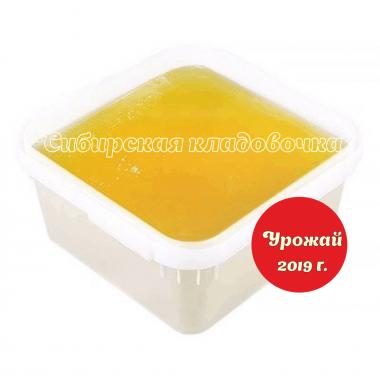 Алтайский мёд донниковый 100 гр.  Урожай 2019 г.