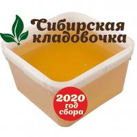 Мёд донниковый (Алтай) 2020 год 1 кг