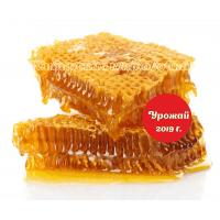 Мёд в сотах (Алтай) 1 кг