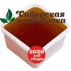 Мёд цветочный (Алтай) 2020 год 1 кг