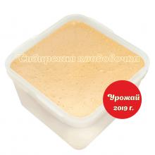 Мёд алтайский эспарцетовый 1 кг