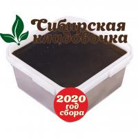 Мёд гречишный (Алтай) 2020 год 1 кг