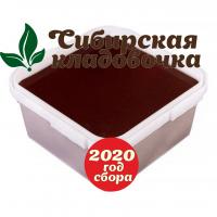 Мёд дягилевый (Алтай) 2020 год 1 кг