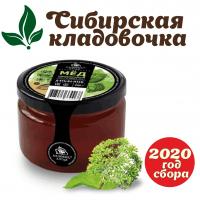 Мёд дягилевый (Алтай) 250 гр 2020 год сбора