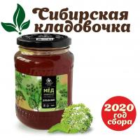 Мёд дягилевый (Алтай) 900 гр 2020 год сбора