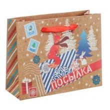 Пакет крафтовый горизонтальный  Зимняя посылка  23 × 18 × 8 см